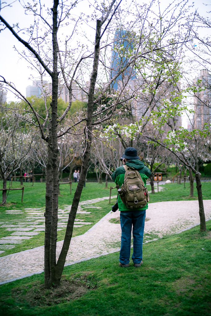 20150323-113140 by Gino Zhang, on Flickr